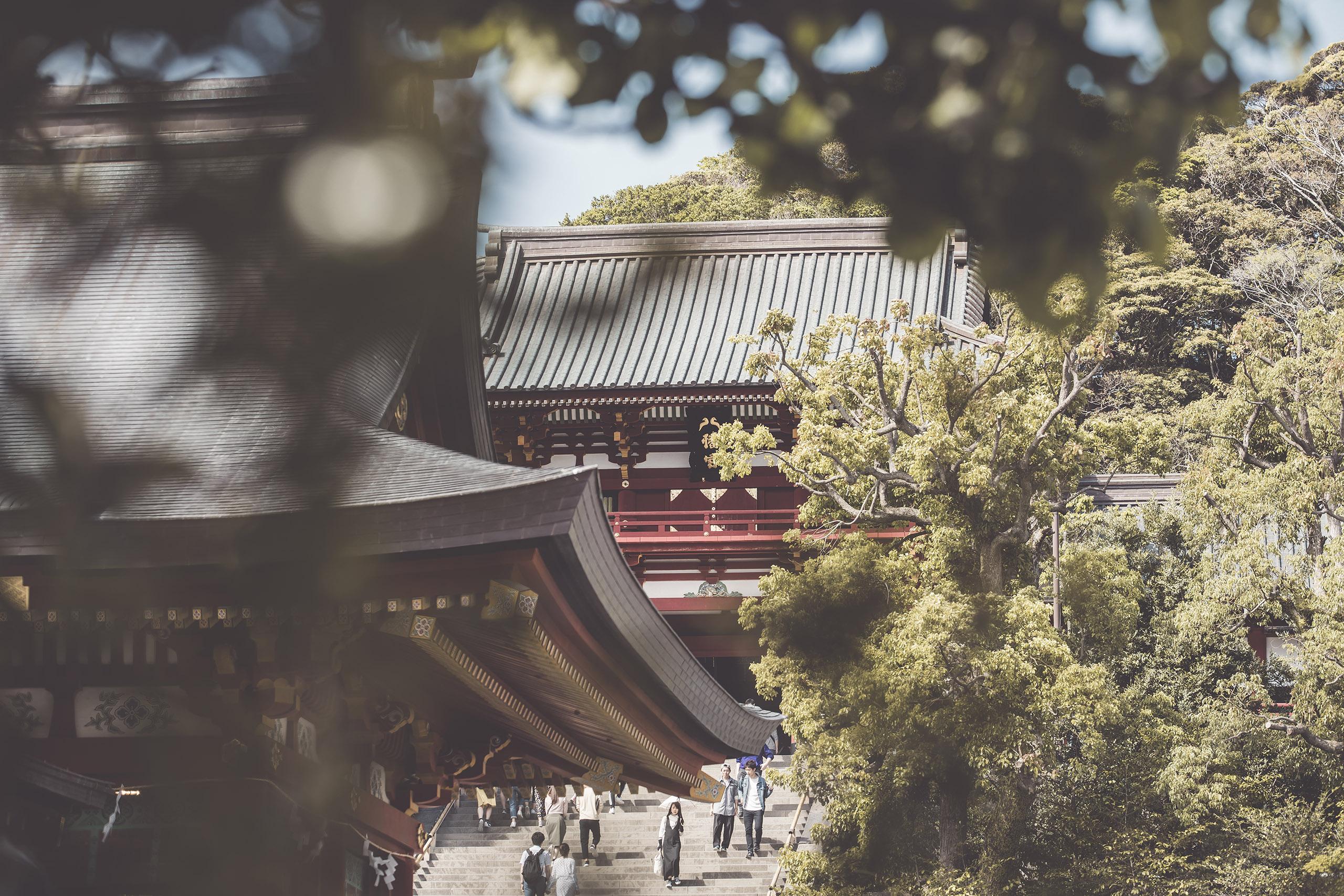 japan_2019 (493)
