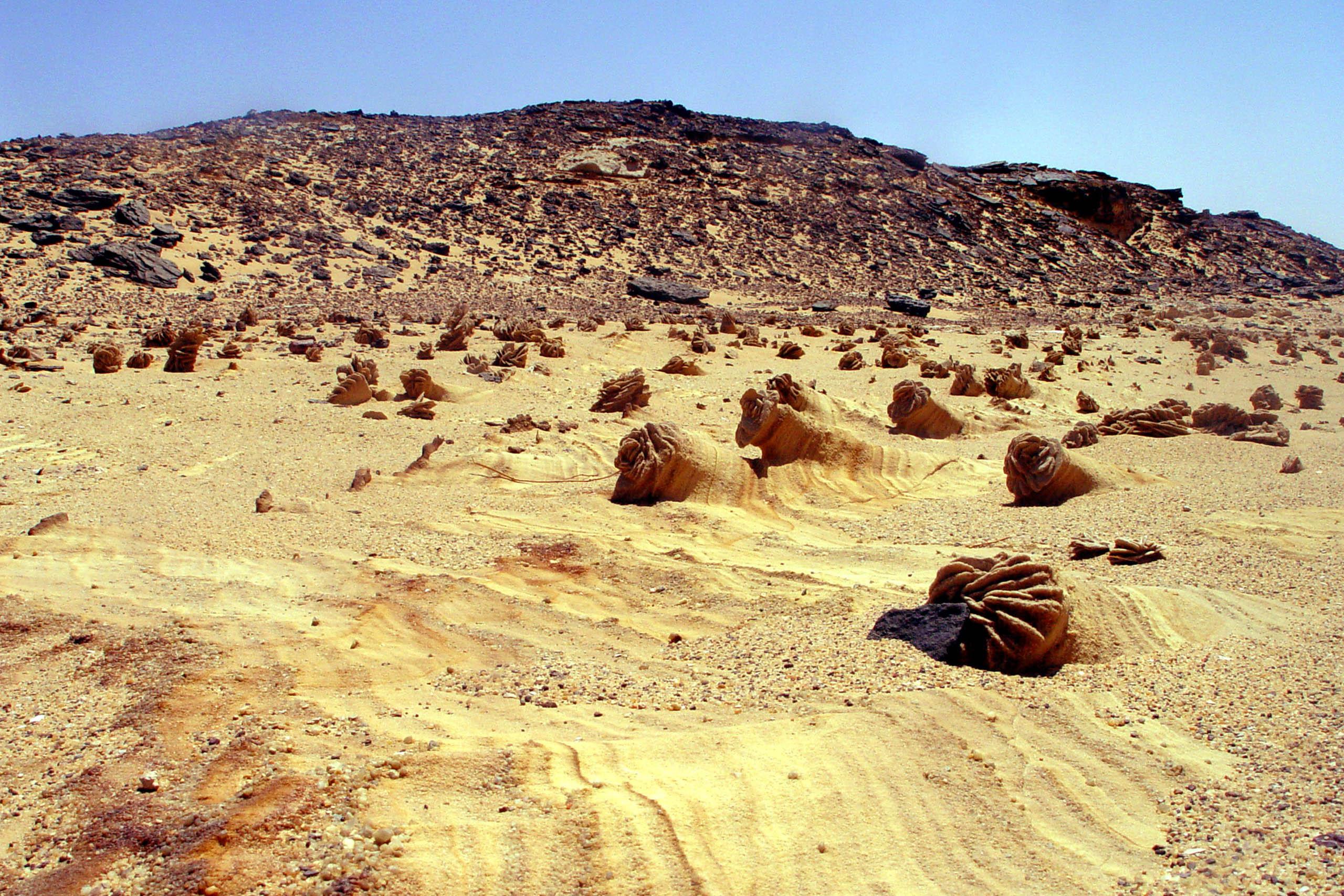 egypt (3)
